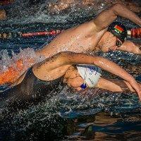 Кубок мира по зимнему плаванию в Амурском заливе,Владивосток,,19 ноября.2017... :: Олег Семенов
