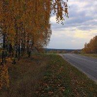 на дорогах России :: оксана