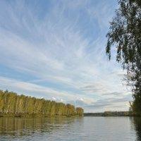 Река  ОЯ  осенью :: Владимир Коваленко