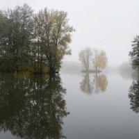 Тишина :: Сергей Дудкин