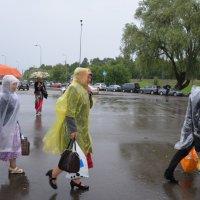 Их Гитлер не остановил, неужели их дождь остановит?! :: Anna Lashkevich