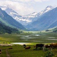"""Долина реки """"Маруха"""" :: Диана"""