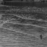 Узоры на воде :: Александра