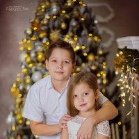 Новогодняя сказка Владимира и Дарьи :: Кристина Беляева