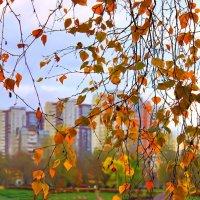 Осеннее :: НАТАЛЬЯ