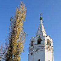 Колокольня в Старочеркаске :: ДмитрийМ Меньшиков