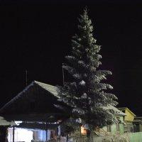 ночь улица фанарь :: petrof7
