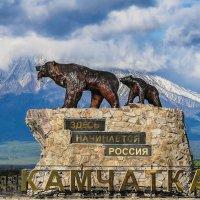 Символ Камчатки. Медведи с видом на Корякский вулкан. :: Александр Поборчий