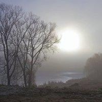 Пробилось солнце сквозь туман... :: Инна Щелокова