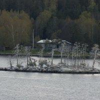 Серебрянный остров :: Сергей Мышковский