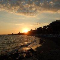 Последние лучи заходящего солнца. :: Natali