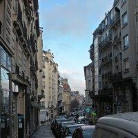 Зима в Париже. :: Виталий Селиванов