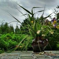 натюрморт в пейзаже) :: Ирина Коваленко