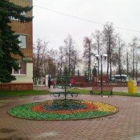 Городские краски в ноябре. :: Ольга Кривых