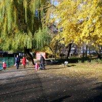 Ясный и тёплый день в ноябре... :: Тамара (st.tamara)