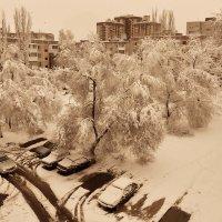 Глядь в окно, а там зима! :: Виктор Малород