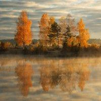 *****Осень золотая***** :: Сергей ***