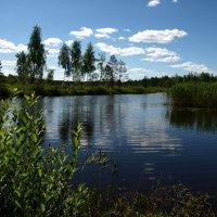 На дальнем озере :: Василь Веренич