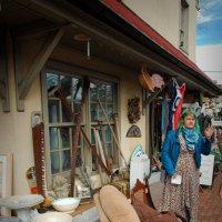 Антикварный магазин в Нью Хоупе :: Олег Чемоданов