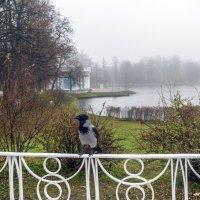 В Екатерининском парке :: Варвара