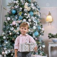 Новогоднее настроение :: Юлия Масликова