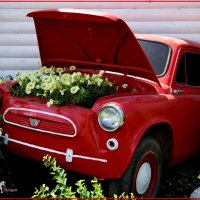 """Вторая жизнь""""горбатого"""". А в молодости уступал в скорости разве только лишь...Ferrari... :: Anatol Livtsov"""