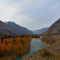 Чуйский тракт в долине р.Чуя. :: Валерий Медведев