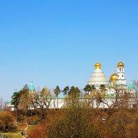 Воскресенский Новоиерусалимский монастырь :: Иван