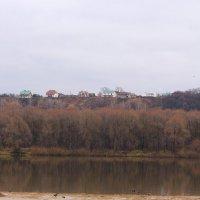 Ноябрь у реки :: Татьяна Ломтева