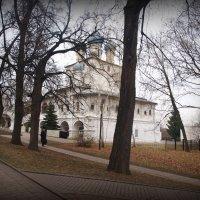 Начало ноября. :: Владимир Драгунский