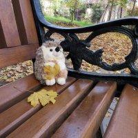 Ежик в осени :: Наталья (D.Nat@lia)