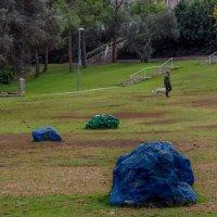 Цветные камни :: Alla S.