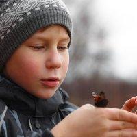 Малыш и бабочка :: Vladislav Gushin