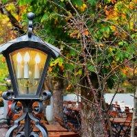 Осенний свет :: Николай Танаев