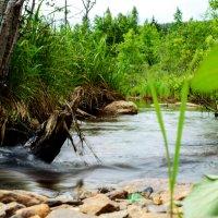 Река :: Екатерина