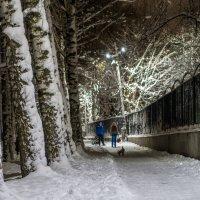 Выпал снег в Михайлов день :: Dimirtyi