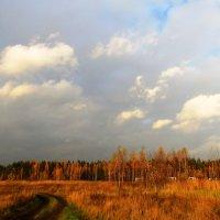 Осеннее небо :: Андрей Снегерёв