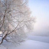 Зимний пейзаж. :: Анатолий 71