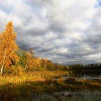 Под светом осеннего солнца :: Андрей Снегерёв