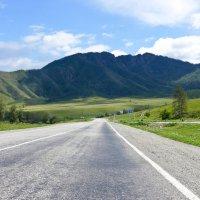 Дороги Алтая.. :: Стил Франс