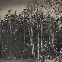 Зима :: Владимир Буравкин