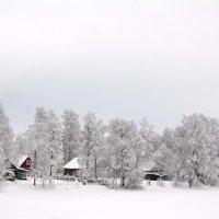 Белое безмолвие :: Николай Танаев