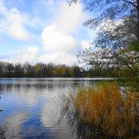 На Голубых озерах :: Маргарита Батырева