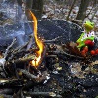 Холодно зимою маленькой лягушке, кожа вся скукожилась на зеленом брюшке..:) :: Андрей Заломленков