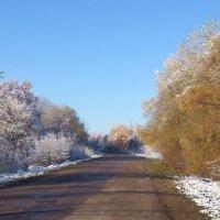Встреча осени и зимы :: Наталья А