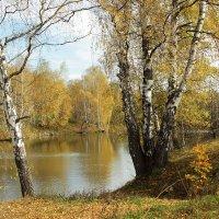 Осень золотая :: Ольга Анянова