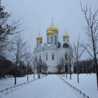 Первый день зимы.... :: Tatiana Markova