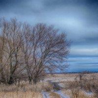 Уж небо осенью дышало..... :: Александр Малышев