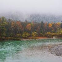 Осень на реке :: Николай Танаев