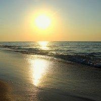 sea :: Катерина Шинтарь